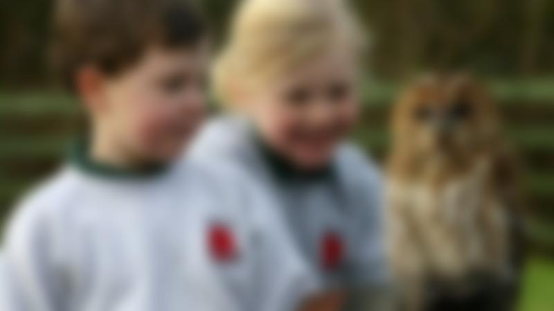 Kids holding Tawny Owl at Gauntlet Birds of Prey in Knutsford