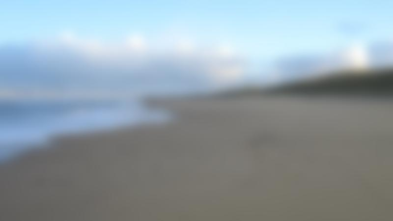 A view of the sandy beach at Waxham Beach, Waxham
