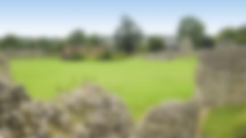 Ruins at Berkhamsted Castle