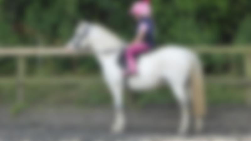 Girl horse riding at Pevlings Farm Riding and Livery Stables in Templecombe