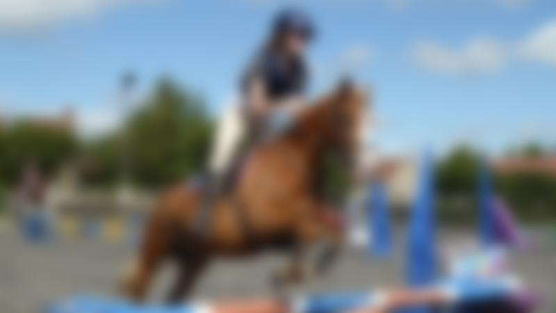 Woman horse riding at Pevlings Farm Riding and Livery Stables in Templecombe