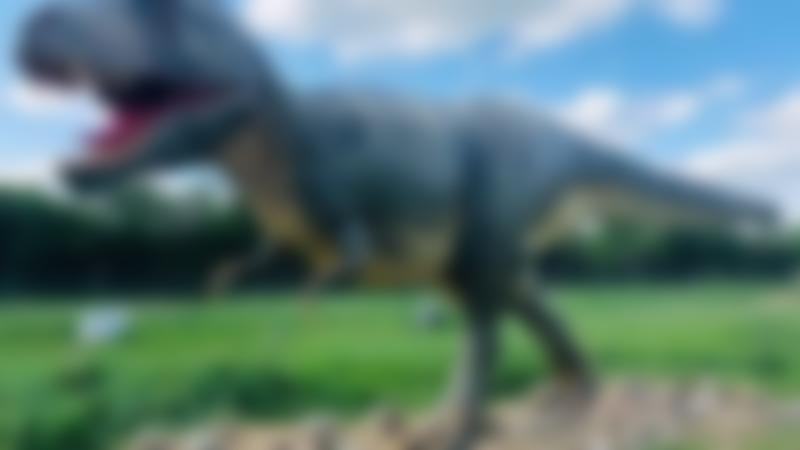 Dinosaur at All Things Wild Nature Centre