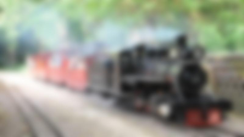 Steam train at Audley End Miniature Railway in Saffron Walden
