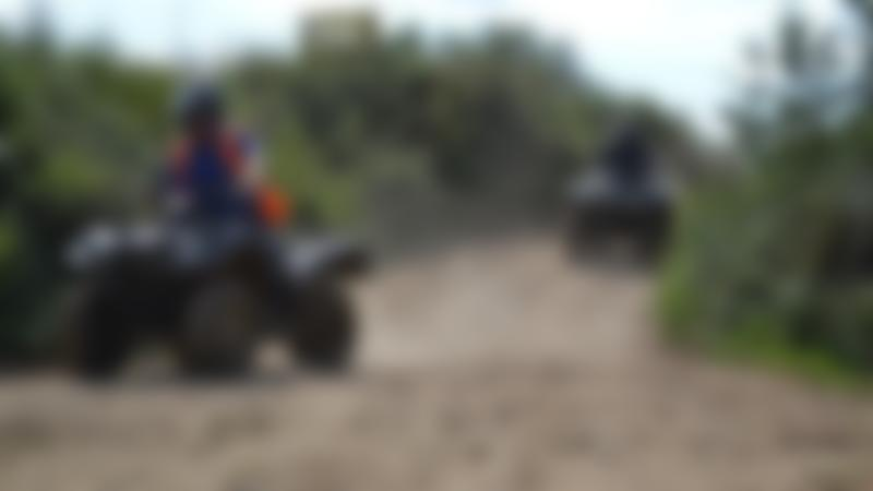 People on Quad Bikes at Wild Tracks in Newmarket