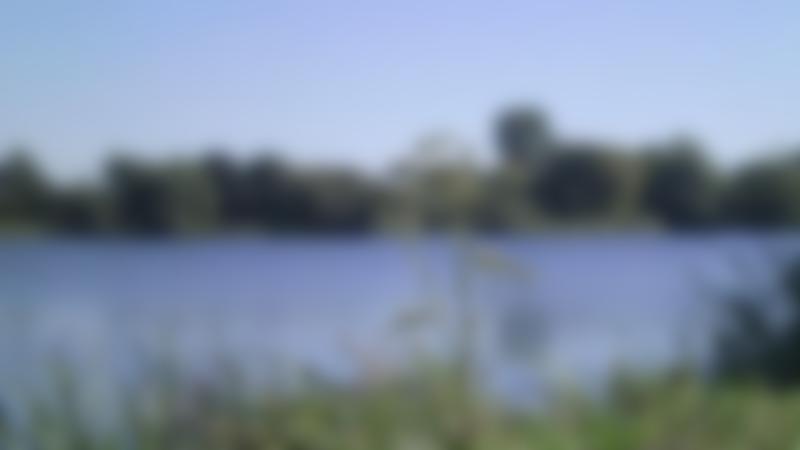Lake at Emberton Country Park