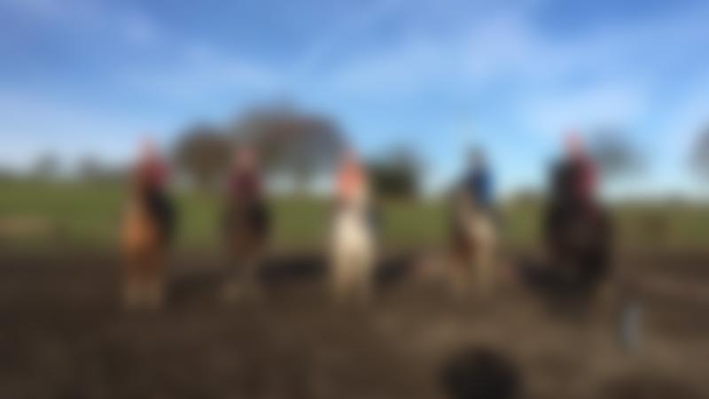 People on horses at Field House Equestrian Centre in Crook