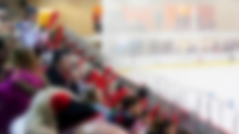 Spectators at ice hockey game at Streatham Ice Rink
