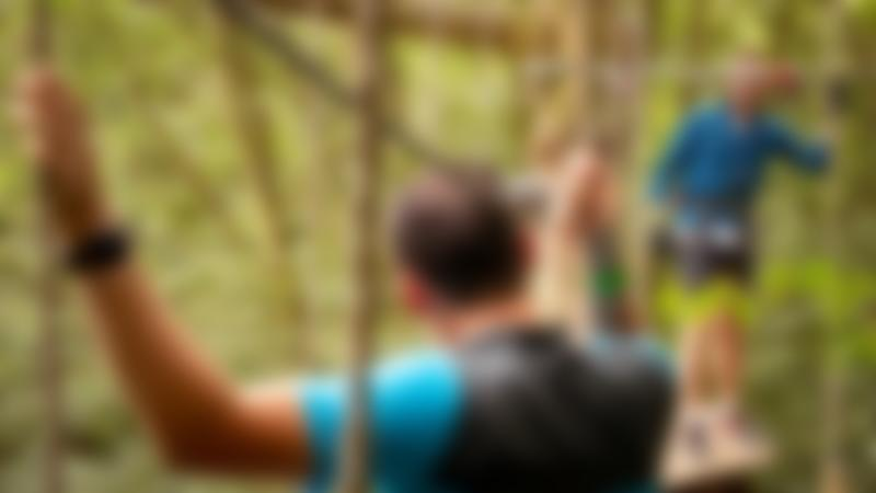 Two people on the high ropes at Go Ape Bedgebury