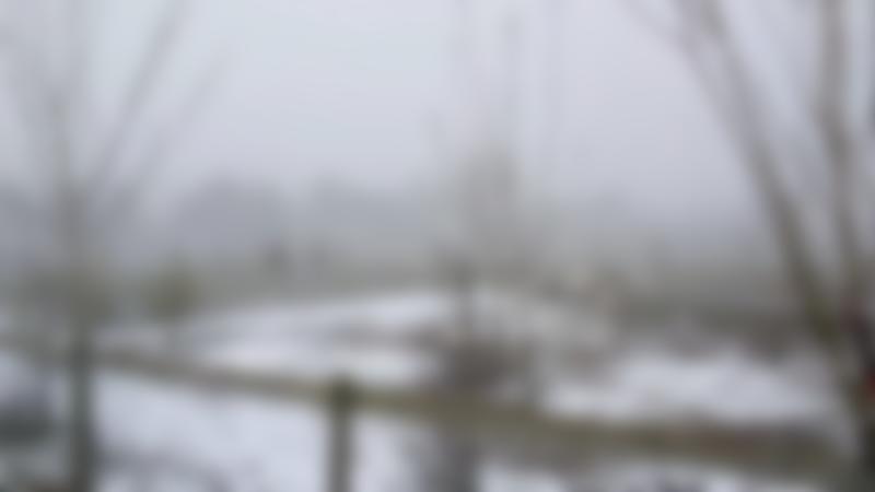 Winter at Paradise Found Educational Farm Park in Sapcote
