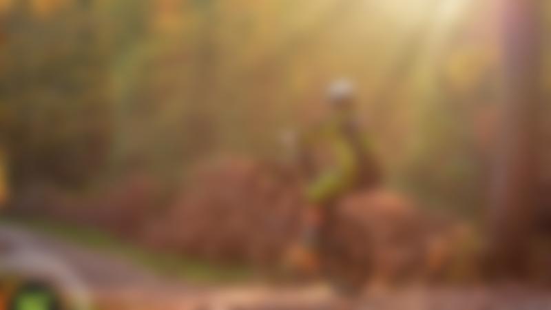 Boy mountain biking at Pedalabikeaway in Coleford