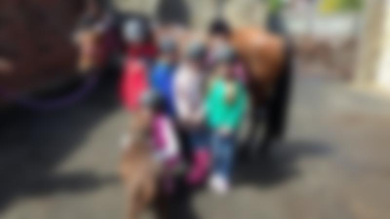 Kids with horse at Murton Equestrian Centre in Newcastle upon Tyne