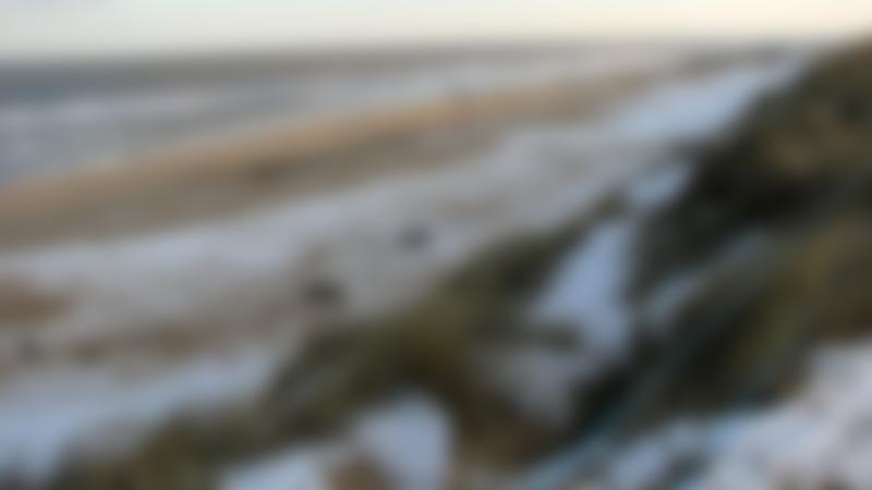 A view of Horsey Beach, Horsey