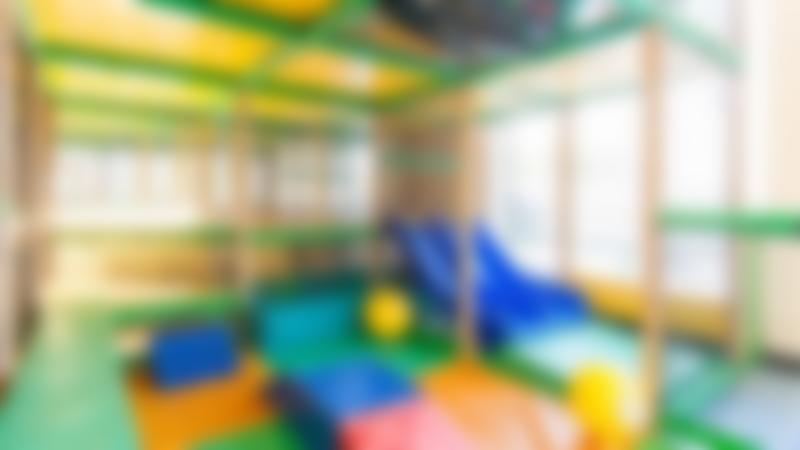 Inside soft play frame at The Monkey House Dawlish