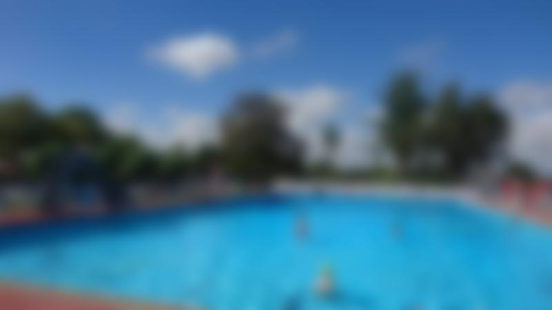 Families swimming at Beccles Outdoor Swimming Pool