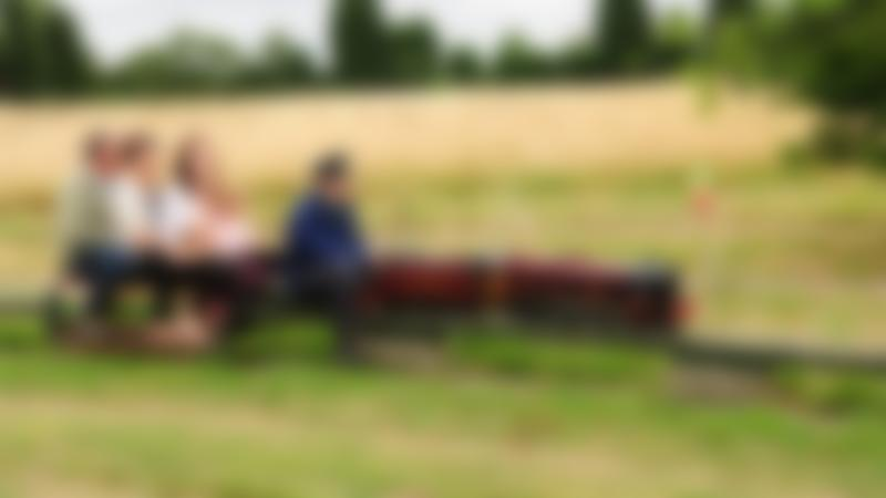Family on miniature train at Summerfields Miniature Railways in Bedford