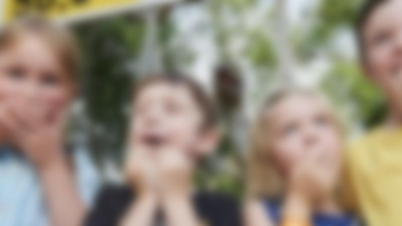 Kids at Ryeassic Adventure Park in Hoddesdon