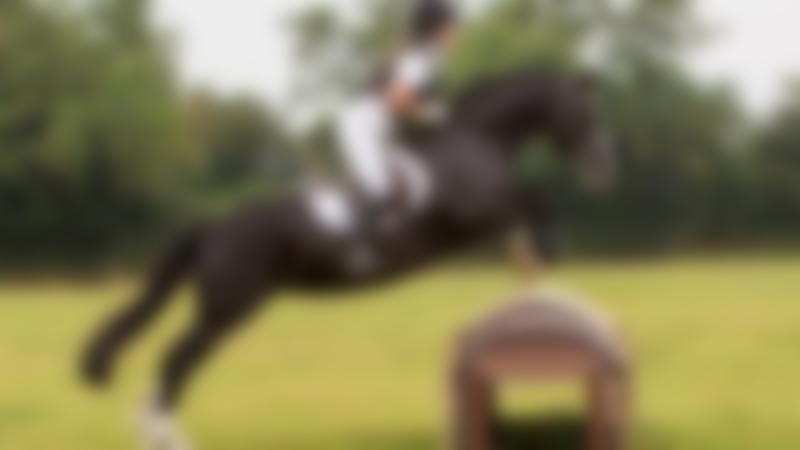 Girl on horse jumping at Witham Villa Riding Centre in Broughton Astley