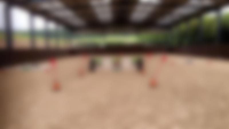 Horse riding course at Cannock Chase Horse Trekking in Stafford