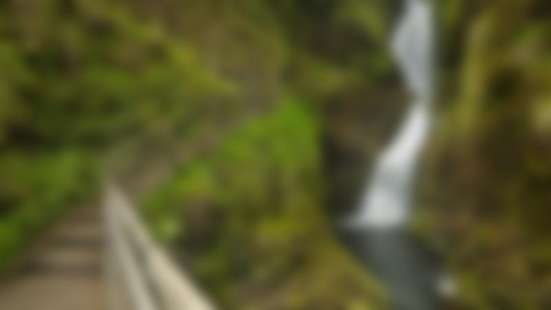 Walking path near waterfall at Glenariff Forest Park in Cushendall