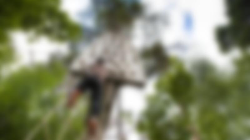 Boy climbing at Go Ape Wendover