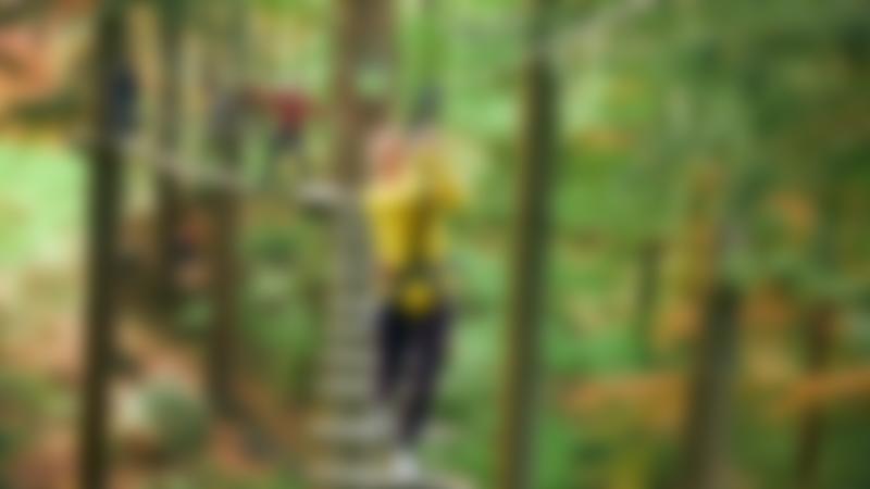 Girl walking across ladder at Go Ape